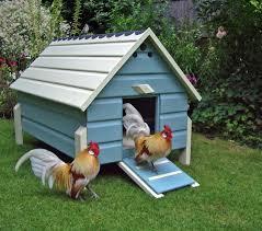 Backyard Chickens Magazine by Dutch Bantams Scratch Cradle