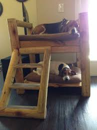 Doggie Bunk Beds How To Build A Bunk Bed For Your Pets Diy Projects For Everyone