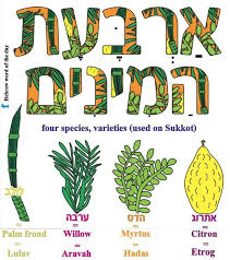 498 best learning hebrew images on learn hebrew