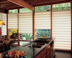 roman blinds for large windows decor design gyleshomes com