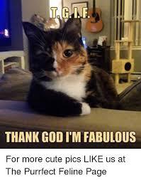 I Am Fabulous Meme - 25 best memes about im fabulous im fabulous memes