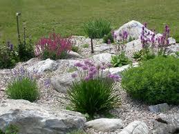 rock garden pictures