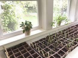 little farmstead starting our vegetable garden indoors