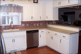 Painted Old Kitchen Cabinets Kitchen How To Paint Old Kitchen Cabinets Milk Paint By General