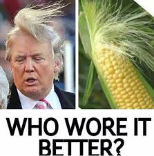 Who Wore It Better Meme - who wore it better funny donald trump meme