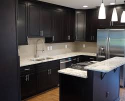 Elegant IKEA Dark Kitchen Cabinets Ideas Ongo - Ikea black kitchen cabinets