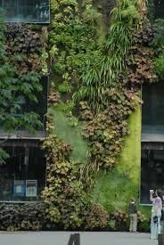 69 best vertical gardens images on pinterest vertical gardens