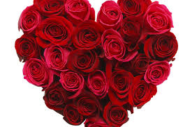 roses valentines day s new flower shop disappears just in time for s