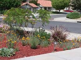 water wise landscape showcase eastern municipal water district