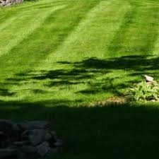 Landscape Syracuse Ny by Budget Cuts Lawn Service Landscaping Syracuse Ny Phone