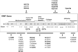 vwf mutations and new sequence variations identified in healthy