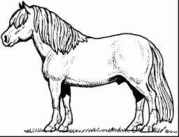 astonishing horse coloring pages with free horse coloring pages