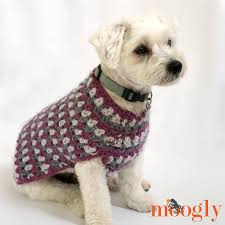 Crochet Pattern For Dog Coat | well dressed dog coat moogly