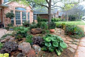 show off your xeriscape in water wise landscape tour oak cliff