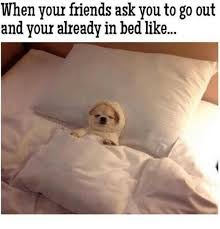 Bed Meme - 25 best memes about in bed like in bed like memes