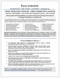 sample resume for ceo ceo coo technology page 2 resume samples pinterest