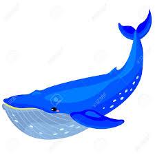whale cartoon free clip art of whale clipart 6844 u2014 clipartwork