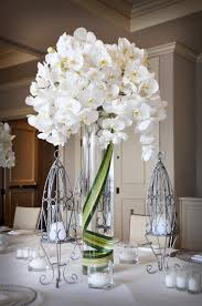 orchid centerpiece cascading phalenopsis orchid centerpiece the