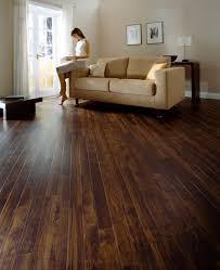 Laminate Vs Vinyl Flooring Laminate Flooring Wood Floors Shaw Underlayment Options Idolza