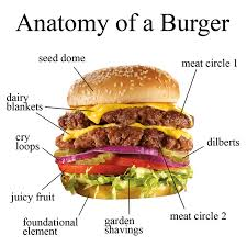 Hamburger Memes - burger anatomy meme by littlesister2015 memedroid