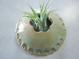 the 25 best ceramic wall planters ideas on pinterest wall