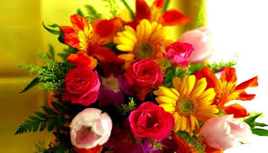 fresh cut flowers fresh cut flowers care at home cheering inno farms india