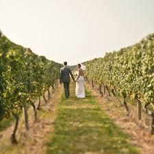 htons wedding venues vineyard wedding venues in new york state 28 images a premier