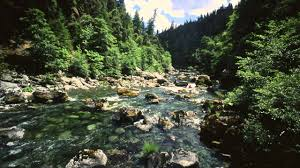 oregon rivers our natural world series youtube