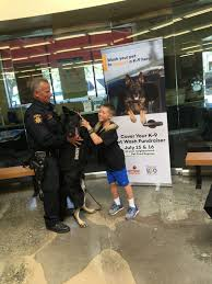 bichon frise golf head cover 9 year old from marin county raises nearly 1 400 to buy police