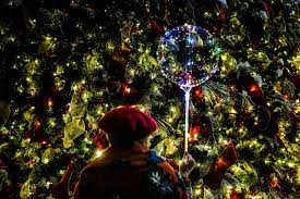Where Is The Christmas Tree In New York City The U0027christmas Freak U0027 Of Fifth Avenue The New York Times