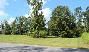 country estates vermilion country estates real estate homes for sale in