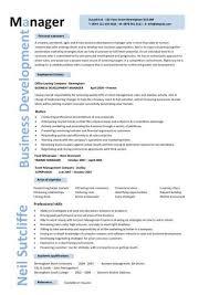International Business Resume Sample by Resume Manager Sample Business Manager Cv Sample Time Management