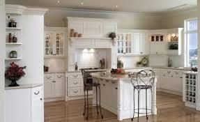 cabinet lovable european kitchen cabinets dallas unbelievable