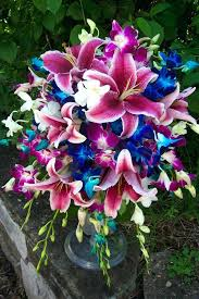 Cascading Bouquet Stargazer Lilies Wedding Bouquets Stargazer Lily And Blue Orchid