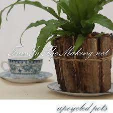 best 25 plastic plant pots ideas on pinterest lemon tree plants