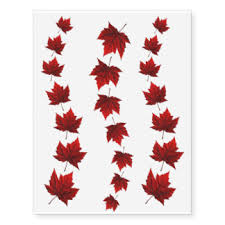 maple leaf temporary tattoos zazzle
