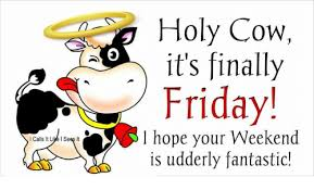 Finally Friday Meme - l calls it live is it holy cow it s finally friday hope your
