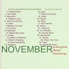 Challenge What To Do November Photo A Day Challenge November Photography And