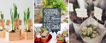 plant wedding favors 10 fantastic wedding favour ideas from plants to sted spoons