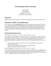 Resume Sample Quality Control by It Delivery Manager Resume Sample Free Resume Example And