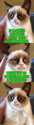 Newspaper Cat Meme - bad pun grumpy cat memes imgflip
