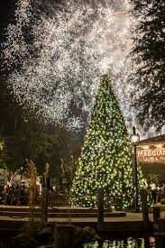 city notes pineapple debuts 2 nocatee models town center holiday