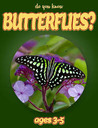 butterfly facts for kids kids nonfiction book clouducated