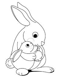 rabbits color 100 images free rabbit color pages print