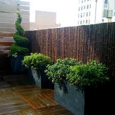 architecture modern garden with brown wood flooring also green