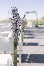 wedding arch nyc battery gardens wedding wedding arch curly willow arch