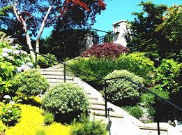 a budget best landscaping a hill ideas on pinterest sloped yard