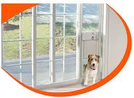 doggy door glass sliding patio door with dog door images glass door interior