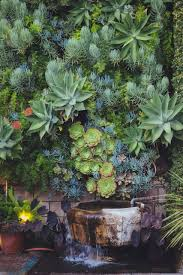 succulents water fountain water element green wall living wall