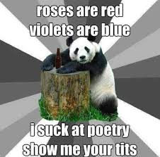 Poetry Meme - roses are red violets are blue i suck at poetry show me your tits